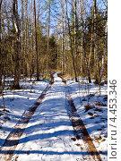 Купить «Дорога в весеннем лесу», фото № 4453346, снято 17 марта 2013 г. (c) Сергей Трофименко / Фотобанк Лори
