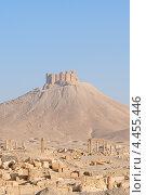 Купить «Руины древнего города Пальмира на фоне средневековой крепости, Сирия», фото № 4455446, снято 2 июля 2008 г. (c) Некрасов Андрей / Фотобанк Лори
