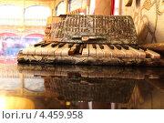 Старинный аккордеон и его отражение. Стоковое фото, фотограф Сергей Аряев / Фотобанк Лори