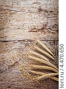 Пшеница на старой древесине. Стоковое фото, фотограф Сергей Телеш / Фотобанк Лори