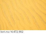 Купить «Желтый песок», фото № 4472902, снято 27 февраля 2013 г. (c) Александр Подшивалов / Фотобанк Лори