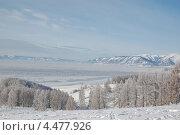 Зимний Алтай. Стоковое фото, фотограф Елена Бачурина / Фотобанк Лори