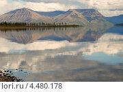 Купить «Озеро Лама, мыс Тонкий, полуостров Каменный», фото № 4480178, снято 19 августа 2011 г. (c) Сергей Дрозд / Фотобанк Лори