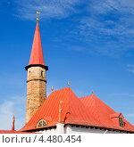 Купить «Крыша приоратского дворца. Гатчина», эксклюзивное фото № 4480454, снято 8 марта 2013 г. (c) Александр Щепин / Фотобанк Лори