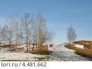 Купить «Ранняя весна в парке», фото № 4481662, снято 28 марта 2010 г. (c) Горшков Игорь / Фотобанк Лори
