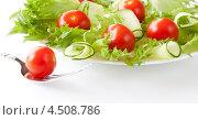 Овощной салат и помидор на вилке. Стоковое фото, фотограф Петеляева Татьяна / Фотобанк Лори