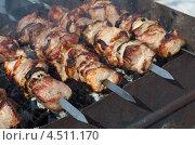 Купить «Шашлык из свинины на мангале», эксклюзивное фото № 4511170, снято 14 апреля 2013 г. (c) Елена Коромыслова / Фотобанк Лори