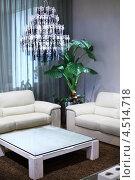 Купить «Комната с двумя диванами, журнальным столиком и люстрой», фото № 4514718, снято 21 ноября 2011 г. (c) Losevsky Pavel / Фотобанк Лори