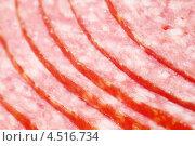 Купить «Колбаса крупным планом», фото № 4516734, снято 4 ноября 2011 г. (c) Losevsky Pavel / Фотобанк Лори