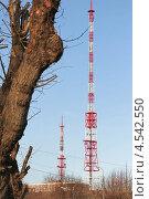 Радиоантенна и дерево. Стоковое фото, фотограф Юрий Ермаков / Фотобанк Лори