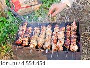 Купить «Приготовление шашлыка на природе», эксклюзивное фото № 4551454, снято 7 мая 2012 г. (c) Алёшина Оксана / Фотобанк Лори