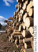Купить «Сосновые бревна», эксклюзивное фото № 4552530, снято 21 апреля 2013 г. (c) Елена Коромыслова / Фотобанк Лори