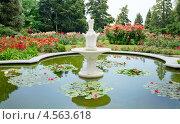 Купить «Пруд. Никитский ботанический сад. Крым», фото № 4563618, снято 13 июня 2012 г. (c) Triff / Фотобанк Лори