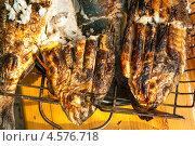 Купить «Рыба, поджаренная на решётке, пикник», эксклюзивное фото № 4576718, снято 9 мая 2010 г. (c) Давид Мзареулян / Фотобанк Лори