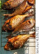 Купить «Рыба, поджаренная на решётке», эксклюзивное фото № 4576722, снято 9 мая 2010 г. (c) Давид Мзареулян / Фотобанк Лори