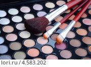 Набор теней и кисти для макияжа. Стоковое фото, фотограф Анфимов Леонид / Фотобанк Лори