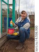 Купить «Девушка красит деревянную теплицу», эксклюзивное фото № 4598990, снято 2 мая 2013 г. (c) Мария Зубарева / Фотобанк Лори