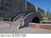 Декоративный пешеходный мостик на Украинском бульваре, Москва (2013 год). Стоковое фото, фотограф lana1501 / Фотобанк Лори
