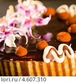 Купить «Фрагмент вкусного шоколадного торта», фото № 4607310, снято 1 марта 2013 г. (c) CandyBox Images / Фотобанк Лори