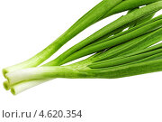 Купить «Зеленый лук крупным планом», фото № 4620354, снято 17 октября 2018 г. (c) Vitas / Фотобанк Лори