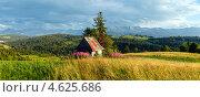 Купить «Панорама летних Татр. Польша», фото № 4625686, снято 29 марта 2020 г. (c) Юрий Брыкайло / Фотобанк Лори