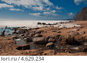 Берег Финского залива. Стоковое фото, фотограф Alioshin.aleksey / Фотобанк Лори