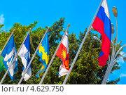 Флаги городов Краснодарского Края на фоне голубого неба (2013 год). Стоковое фото, фотограф ValeriyK / Фотобанк Лори