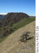 Купить «Такие разные горы», фото № 4631126, снято 28 апреля 2013 г. (c) Игорь Веснинов / Фотобанк Лори