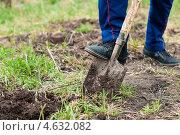 Купить «Мужчина копает землю лопатой на дачном участке», эксклюзивное фото № 4632082, снято 5 мая 2013 г. (c) Игорь Низов / Фотобанк Лори