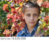 Портрет мальчика в жёлтых осенних листьях. Стоковое фото, фотограф Иванова Ирина / Фотобанк Лори