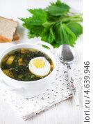 Купить «Суп из крапивы с яйцом и хлеб», фото № 4639946, снято 18 марта 2013 г. (c) Darkbird77 / Фотобанк Лори