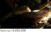 Купить «Рыба жарится на гриле», видеоролик № 4650098, снято 25 марта 2013 г. (c) Данил Руденко / Фотобанк Лори