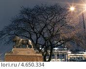 Ночной Петербург, лев Дворцовой пристани (2011 год). Стоковое фото, фотограф Ксения Козырь / Фотобанк Лори