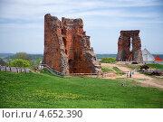 Купить «Руины Новогрудского замка. Беларусь», фото № 4652390, снято 10 мая 2013 г. (c) Liseykina / Фотобанк Лори
