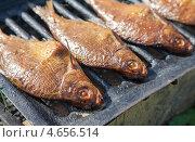 Купить «Рыба горячего копчения лежит на решетке», фото № 4656514, снято 28 февраля 2020 г. (c) FotograFF / Фотобанк Лори