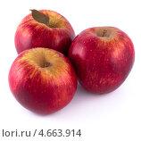 Купить «Красные яблоки», фото № 4663914, снято 25 мая 2013 г. (c) Литвяк Игорь / Фотобанк Лори