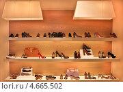 Купить «Женская обувь и сумки на полках в магазине», фото № 4665502, снято 24 мая 2013 г. (c) Victoria Demidova / Фотобанк Лори