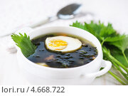 Купить «Крапивный суп с яйцом», фото № 4668722, снято 18 марта 2013 г. (c) Darkbird77 / Фотобанк Лори