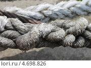 Купить «Старый канат», эксклюзивное фото № 4698826, снято 31 мая 2013 г. (c) Наташа Антонова / Фотобанк Лори