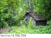 Купить «Заброшенный домик в лесу», фото № 4706754, снято 25 мая 2013 г. (c) Илья Матвеев / Фотобанк Лори