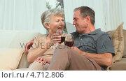 Купить «Mature couple enjoying a glass of red wine», видеоролик № 4712806, снято 10 июля 2020 г. (c) Wavebreak Media / Фотобанк Лори