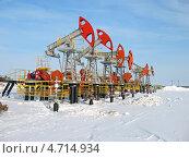 Купить «Нефтяные качалки», фото № 4714934, снято 20 февраля 2008 г. (c) Георгий Shpade / Фотобанк Лори
