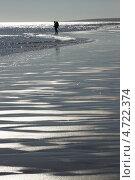 Человек и море. Белое море, Терский берег. Стоковое фото, фотограф Михаил Плетнев / Фотобанк Лори