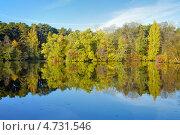 Купить «Деревья на берегу озера, отражающиеся в воде, золотой осенью», фото № 4731546, снято 18 августа 2019 г. (c) Михаил Марковский / Фотобанк Лори