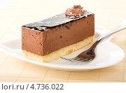 Купить «Шоколадное суфле», фото № 4736022, снято 3 июня 2013 г. (c) Андрей Штанько / Фотобанк Лори