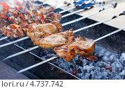 Купить «Аппетитные сочные куски мяса жарятся на мангале», фото № 4737742, снято 28 февраля 2020 г. (c) FotograFF / Фотобанк Лори