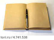 Раскрытая книга и ручка. Стоковое фото, фотограф Виктор Храмов / Фотобанк Лори