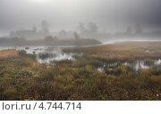 Болото в тумане. Стоковое фото, фотограф Александр Коротков / Фотобанк Лори