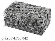 Купить «Серебряная шкатулка», фото № 4753042, снято 6 июня 2013 г. (c) Vladimir Vikhrov / Фотобанк Лори