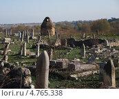 Старое кладбище. Стоковое фото, фотограф Виктория Кныш / Фотобанк Лори